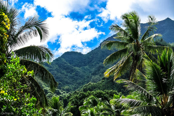 Bjerge på Cook-øerne