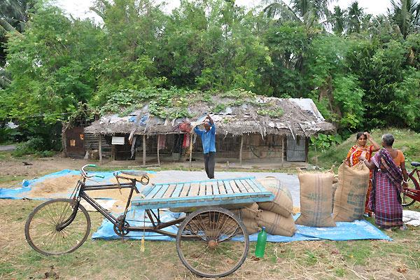 Arbejde på Andamanerne