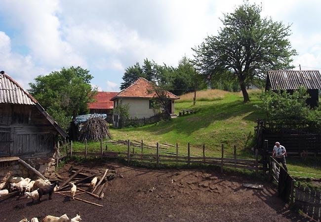 Der arbejdes med hegnet i Gornje